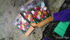 cultural magpie tulip packet