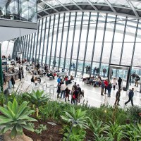 London Sky Garden: Lots of sky, not much garden